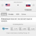 Прогноз на матч США-Словакия 20.02.2018