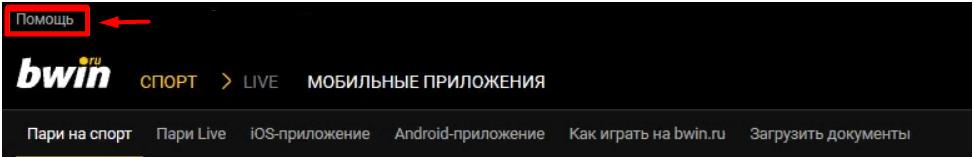 Связь с поддержкой БК Бвин